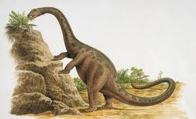 Cetiosauriscus