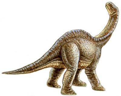 Ohmdenosaurus.jpg