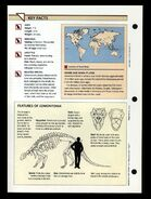 Wildlife fact file Edmontonia back