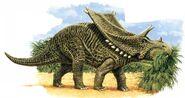 Chasmosaurus 3bd3