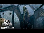 The Pteranodon Aviary Attack in 4K HDR - Jurassic Park III