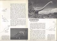 RARE Vintage 1957 World Dinosaurs Smithsonian Book Paleontology Natural History 6