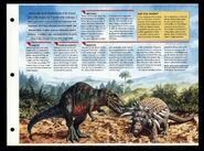 Wildlife fact file Edmontonia inside