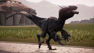 Execavaraptor.png