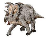 Medusaceratops.jpg