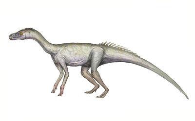Sacisaurus.jpg