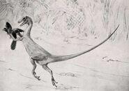 Ornitholestes by Charles R. Knight