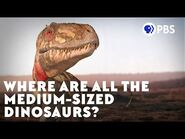 Where Are All the Medium-Sized Dinosaurs?