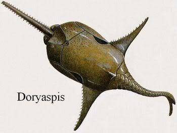 Doryaspis.jpg