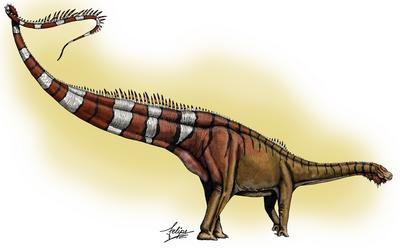 Dinheirosaurus.png