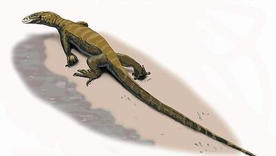 Arcanosaurus.jpg