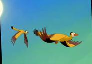 Archaeopteryx TLBT (1)