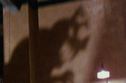 Ceratosaurus shadow in WFRR