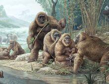 Gigantopithecus-0.jpg