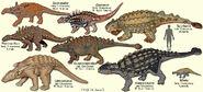 AnkylosaurModels