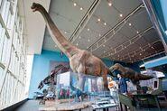 Dino-day-1024x683