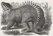 Hylaeosaurus old picture.jpg
