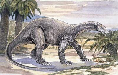 Chinshakiangosaurus.jpg