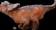 Avaceratops-lammersi-1.png