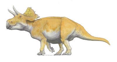 Turanoceratops.jpg