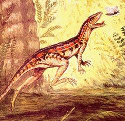 Lagosuchus.jpg