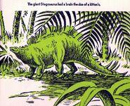 Stegosaurus All About Dinosaurs