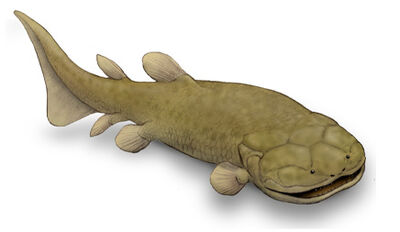 Laccognathus.jpg