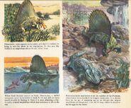 Many adventures of Dimetrodon