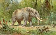 Mastodon color