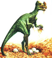 Oviraptor was originally thought to be an egg thief