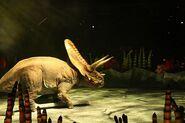 Torosaurus 2
