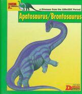 Looking At Apatosaurus