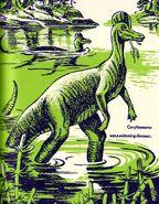 Corythosaurus All About Dinosaurs