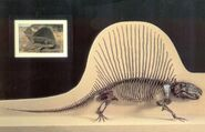 Dimetrodon3-700x450