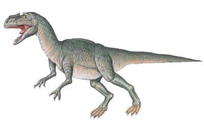 Metriacanthosaurus.jpg