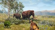 Far Cry Primal Woolly mammoths
