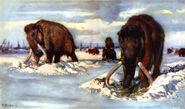 Mammoths digging in snow by zdenek burian 1961