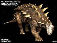 Polacanthus z1