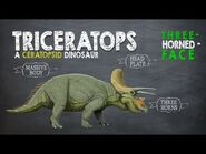 Triceratops Facts! A Dinosaur Facts video about Triceratops, the Three-Horned-Face dinosaur.
