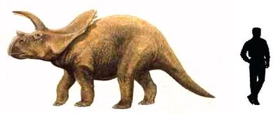 Arrhinoceratops.jpg