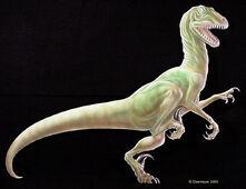 Deinonychus right