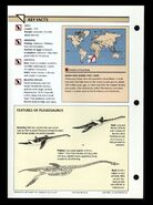 Wildlife fact file Plesiosaurus back