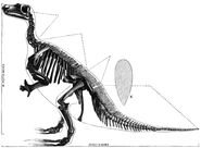 PSM V34 D485 Iguanodon