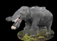 20170717103509!Platybelodon