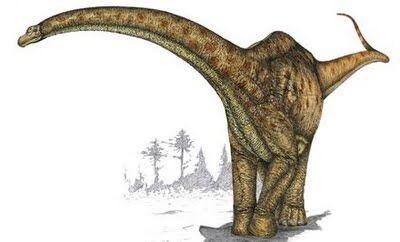 Zapalasaurus.jpg
