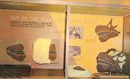 Camarasaurus-exhibit-700x425