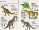 Carnosaurs Spotter's Guide to Dinosaurs