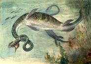 The Snake-necked Elasmosaurus