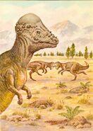 Pachycephalosaurus-postcard-1