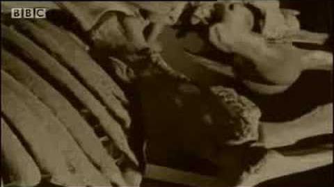 BBC Columbian Mammoth, Death by Tar - Ice Age Death Trap